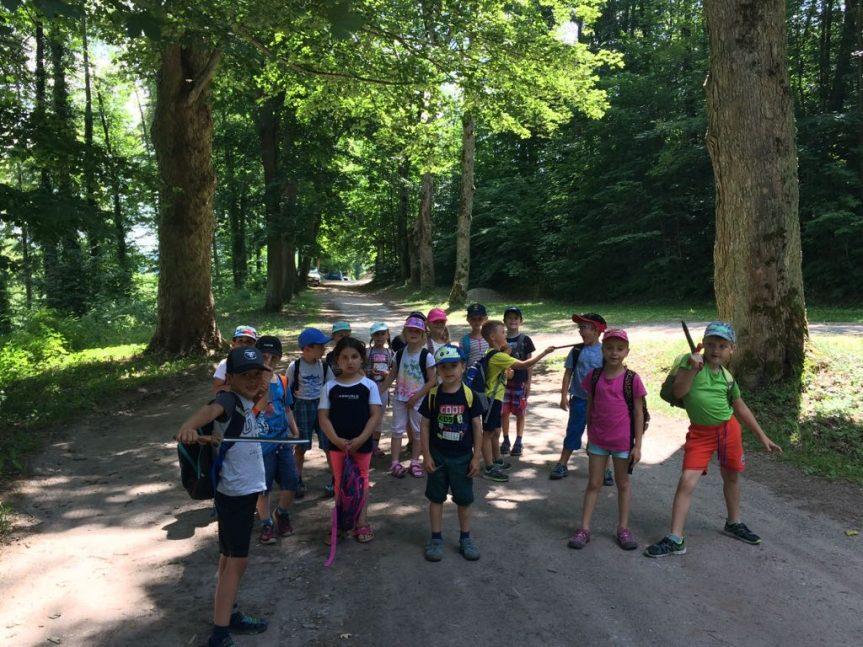 Výlet na Pernštejn – MŠ Žďárská