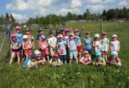 Výprava Motýlků na farmu – MŠ Drobného
